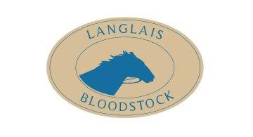 Création du site web de Langlais Bloodstock Nantes par Kagency