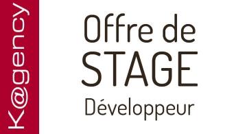 Kagency Nantes propose un stage Développeur(se) web en vue d'une alternance.